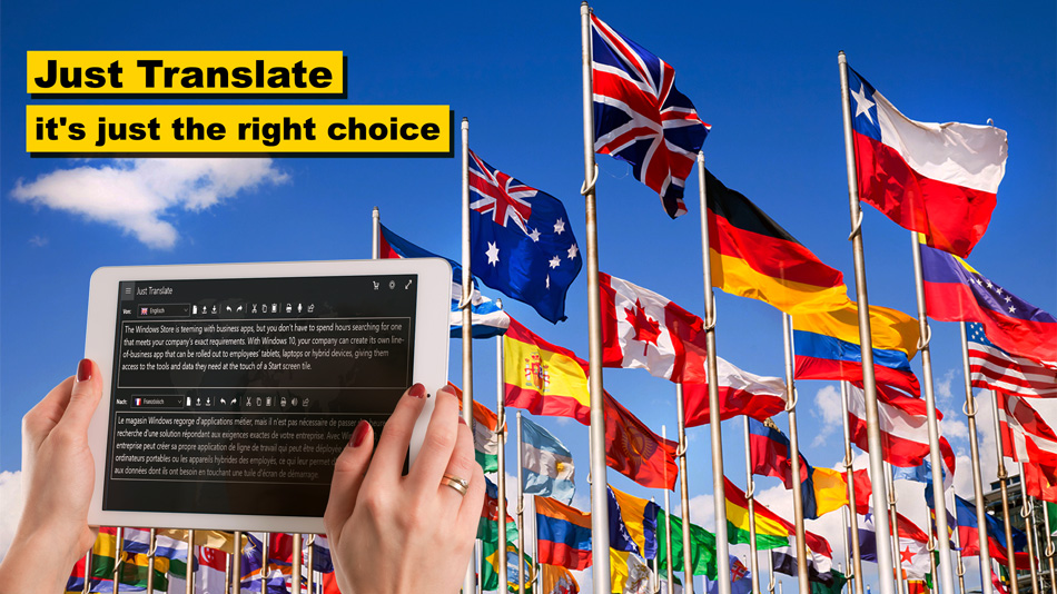 Just Translate - the right choice
